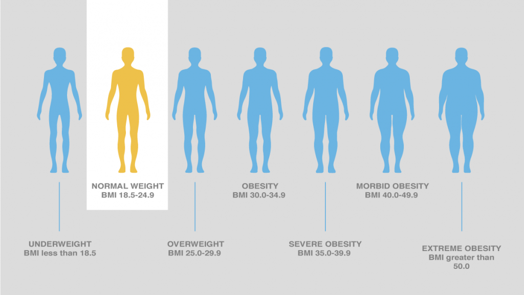 wp content uploads 2020 03 Body mass index 1024x577.png
